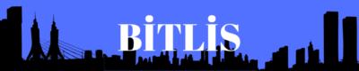 Bitlis Gazeteleri ve Haber Siteleri
