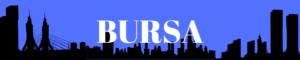 Bursa gazeteleri ve haber siteleri haberleri