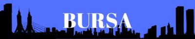 Bursa Gazeteleri ve Haber Siteleri