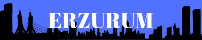 Erzurum Gazeteleri ve Haber Siteleri