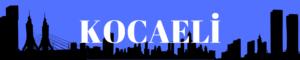 Kocaeli gazeteleri ve haber siteleri haberleri