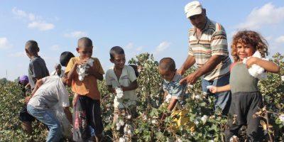 Çalışan çocuk sayısı tam 720 bini geçmiş